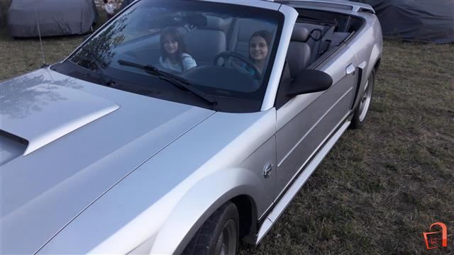 Mustang-GT--V8-