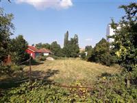 Kumanovo erotska masaza vo Senzualna masaza
