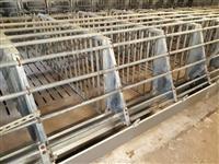 Oprema za svinji