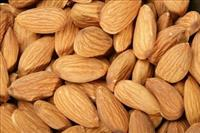 Almond Nuts for export