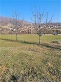 Plac vo Ljubanci 1010m2