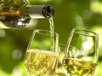 Belo vino od sorta smederevka