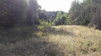 Zemjiste nakaj Kalin Kamen,5km od Sv. Joakim Osog.