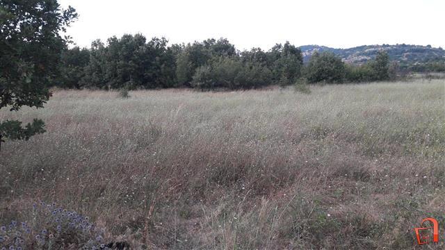 Plac-od-30450m2-Sopot-kaj-patarina-Veles