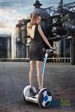 Segway Ninebot Elite samobalanskiracki skuter