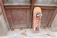 Skateboard Skirol