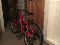 Specialized velosiped