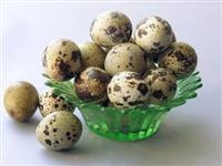 Jajca od prepelici cuvani vo domasni uslovi