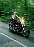 Harley Davidson -95