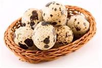 Jajca od japonska prepelica