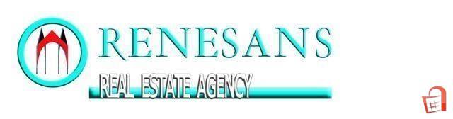 Agencija za Nedviznosti Renesans