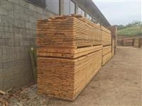 Proizvodstvo na kvalitetna borova i bukova graga